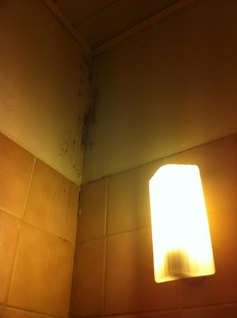 Hotel The Crown: douche avec lumière qui oscille