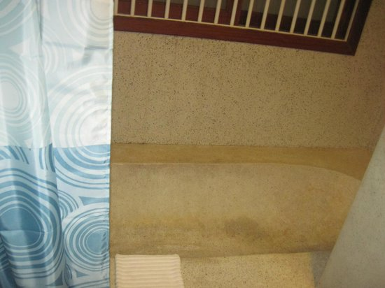 Frangipani Fine Arts Hotel: bathtub