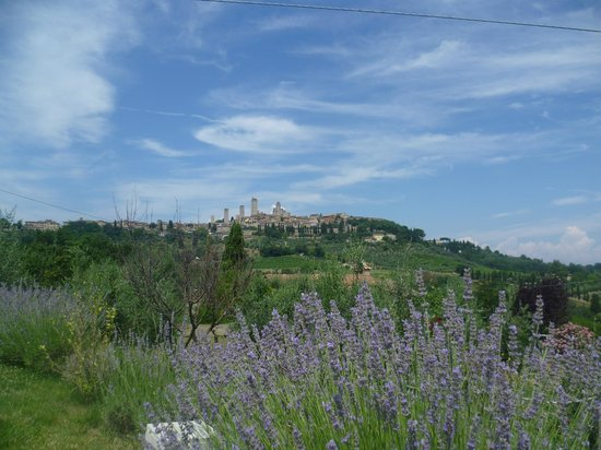 B&B Ponte a Nappo : View from the farmhouse garden