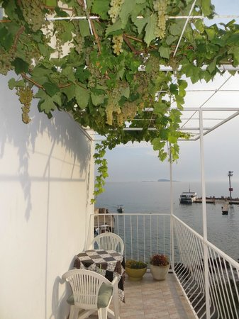 Villa New York: Balcony and told to help yourself to the grapes