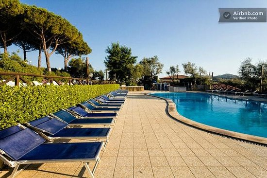 Freedom Holiday Residence: Piscina con solarium e lettini