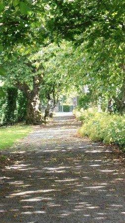 Llangoed Hall: Lovely Walks