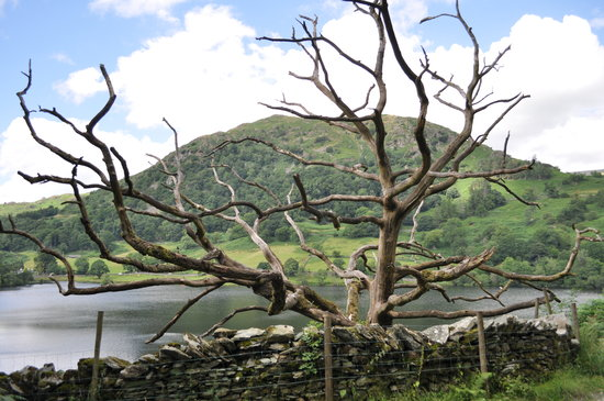 Loughrigg Fell: Rydal water