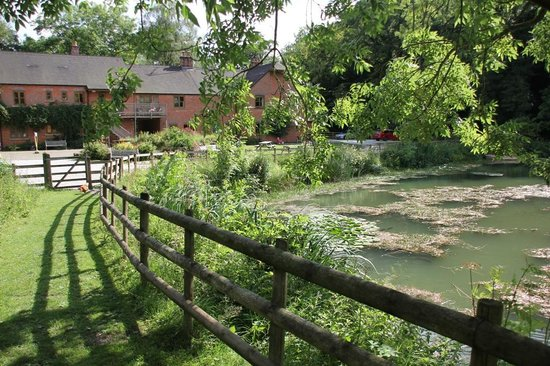 Foxtwood Cottages: The fishing lake