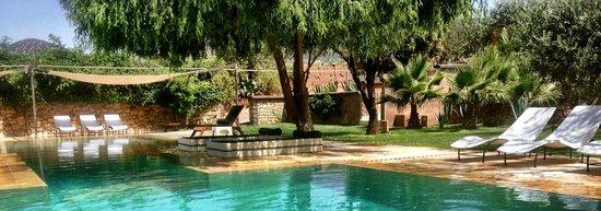 Domaine Malika: Beautiful shady tree area