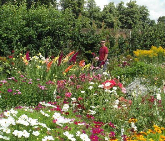Hall Place and Gardens: One of the many flower displays