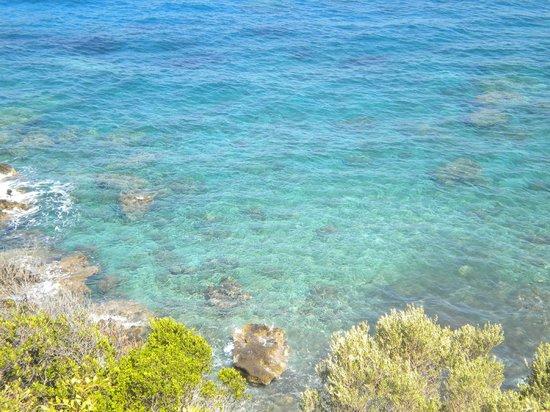 Oceanis Studios: Paesaggio