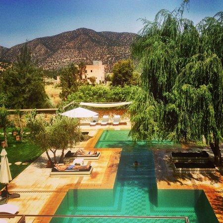 Domaine Malika : Lovely pool oasis
