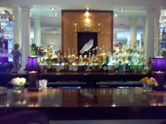 Vivilore: Beautiful Bar