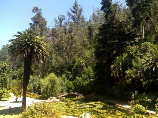 Jardin Botanico Nacional, Viña del Mar