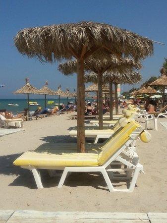 Agrotica Apartments: Beach
