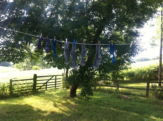 Park House Country Guest House : An idyllic place to dry socks