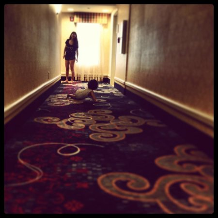 Homewood Suites by Hilton Edgewater - NYC Area: The corridor
