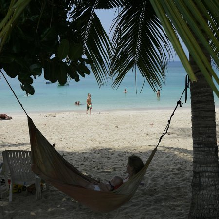 Ibiza Bungalow : Hammock (watch out for the coconuts...)