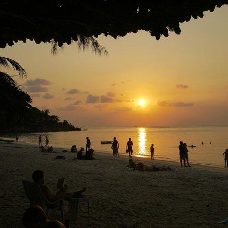 Ibiza Bungalow: Evening view