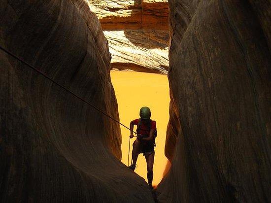 Zion Adventure Company : Canyoneering w/Zion Adventure Co.