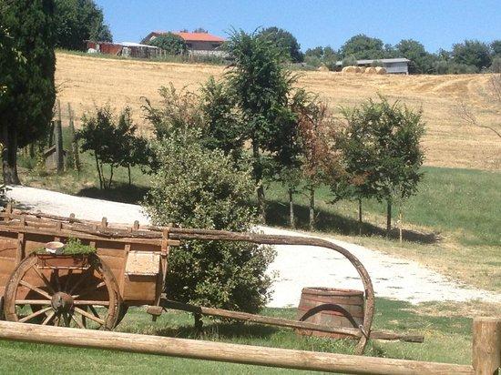 Agriturismo Belagaggio: Surrounding