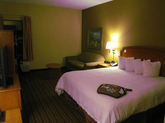 Hampton Inn Philadelphia-International Airport: Picture of my room # 126