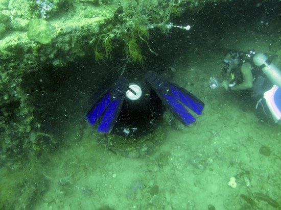 Neptune Dive Center : Entering the Okikawa