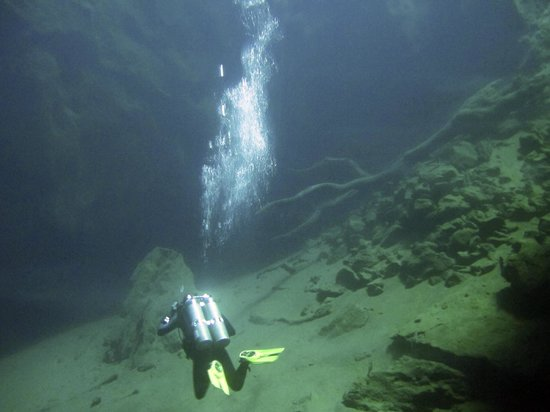 Neptune Dive Center : Inside the Cathedral Cavern