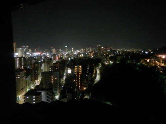 ANA Crowne Plaza Kobe: view