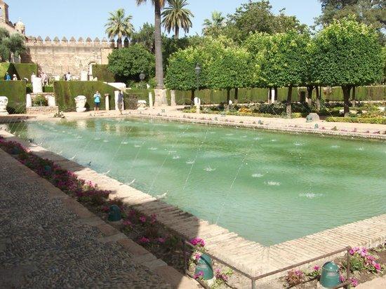 Hotel  Alavera de los Baños: Pool - maybe a new filter needed