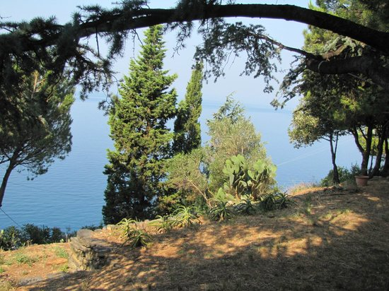 L'Eremo sul Mare : The view of the Ligurian Sea