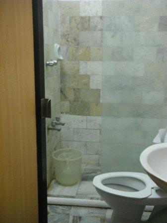 Hotel Mamalla Heritage : Salle de bain exquise, n'est-ce pas ?