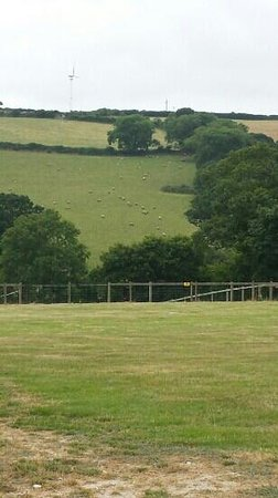 view of the campsite at Court Farm