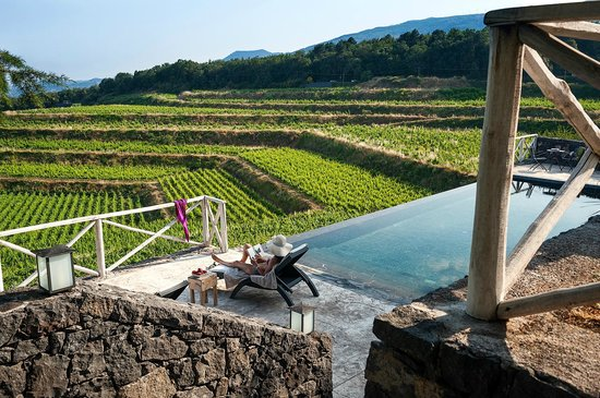 Wine Resort Villagrande: relax on swimming pool