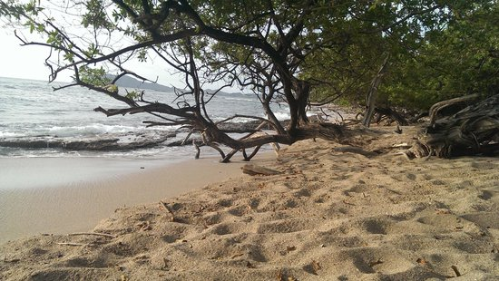 Cala Luna Luxury Boutique Hotel & Villas: beach looking towards Tamarindo