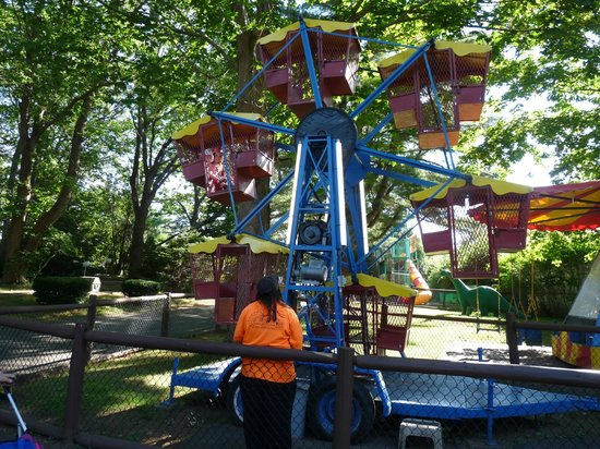 York's Wild Kingdom Zoo and Fun Park: The kiddie ferris wheel, there is a larger ferris wheel that adults can ride on.