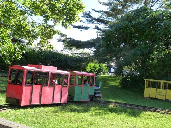 York S Wild Kingdom Zoo And Fun Park The Train