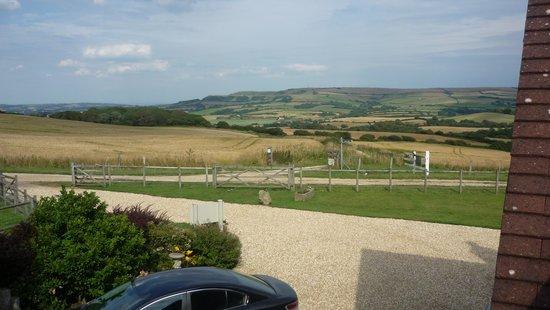 Hermitage Court Farm: The View