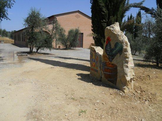 Azienda Agricola Losi Querciavalle: New cellar