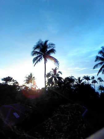 Kwaimaipar Orchid Resort Spa & Wellness: Bungalow 15 balcony view.
