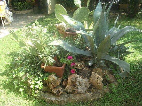 C'est La Vie: Il giardino