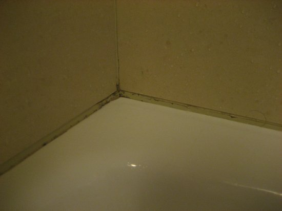 Homewood Suites by Hilton Toronto Vaughan: Mould Bathroom