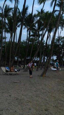 Waikoloa Beach Resort: ワイコロアビーチ