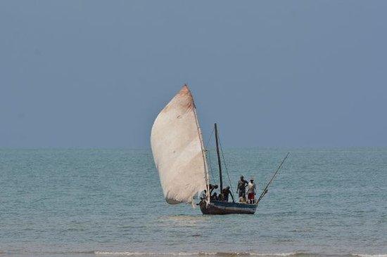 Kijongo Bay Beach Resort: local life