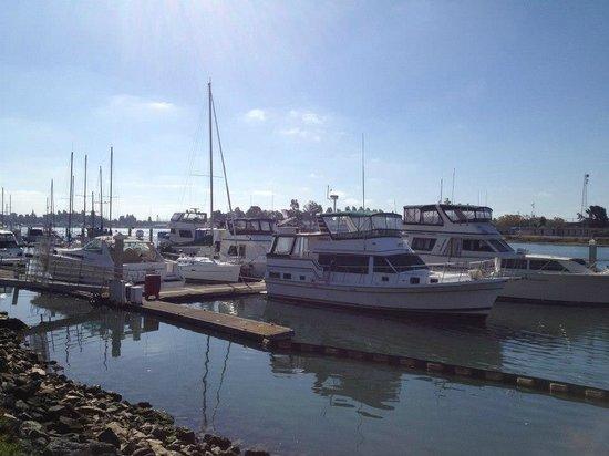 Homewood Suites by Hilton Oakland-Waterfront : Vista da parte de trás do Hotel, de frente ao Pier!