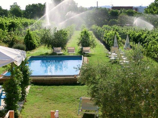 Residenza Eden: Der Pool vor dem Haus