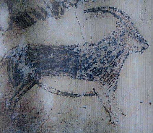 Niaux Cave: Ibex at Grotto at Niaux, Tarascon sur Ariege