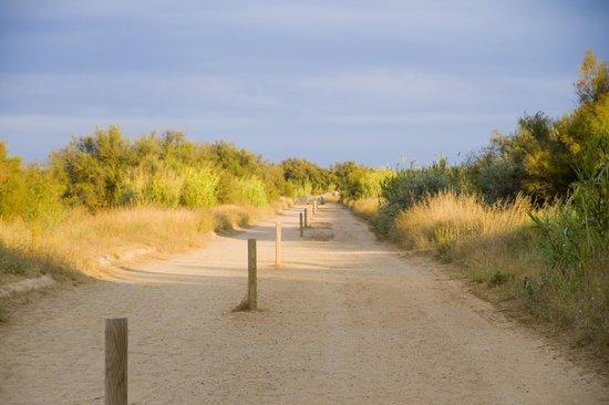Feriendorf Les Muriers/ Les Muriers : Östlicher Weg vom öffentlcihen Parkplatz zum Strand