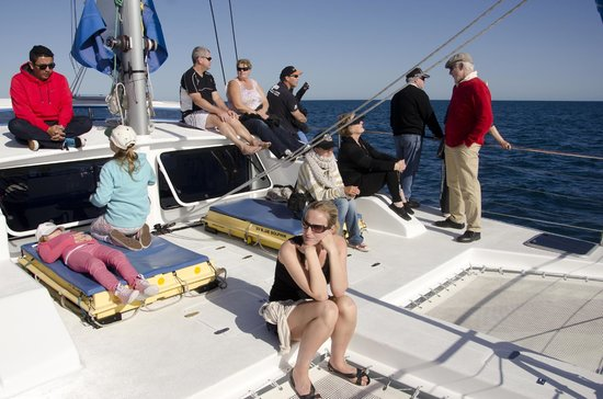 Blue Dolphin Marine Tours: On board the Blue Dolphin
