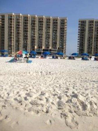 Phoenix Condominiums: Condo from beach