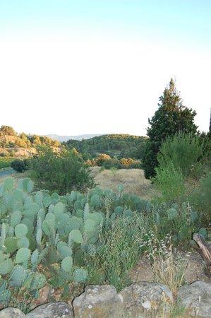 Domaine de Palatz: View from gites