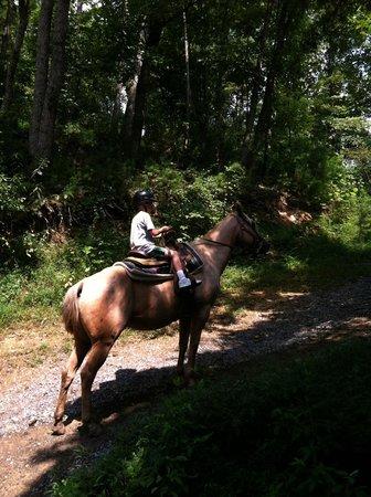 Big Rock Dude Ranch at Ponderosa : Horseback riding