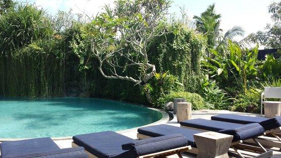 Maca Villas & Spa: decent pool for a 25 villa resort