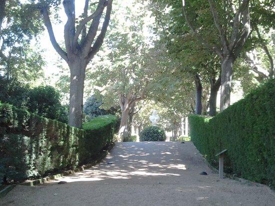 Jardin Santa Clotilde : ombres